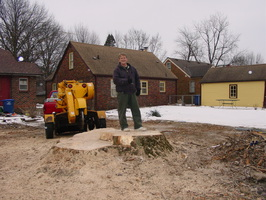 12ft. Diameter tree stump.